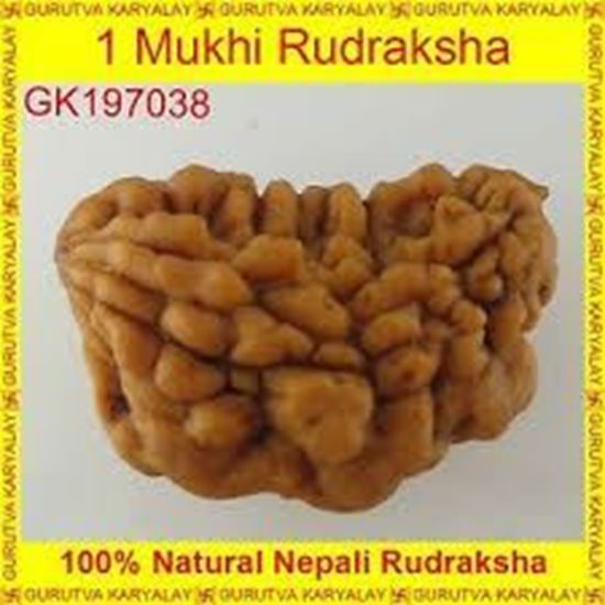 Picture of 1mukhi-indo